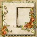 Vintage background with gorgeous flowers with frame for photos beautiful and lace place photo and text Stock Images