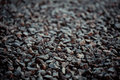 Vintage background of gravel. film grain. Texture of a wet road. One of a million. A special and outstanding object Royalty Free Stock Photo