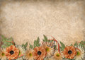 Vintage background with lace and border of beautiful flowers Royalty Free Stock Photo