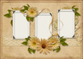 Vintage background with photo frames and gerbera frame flowers lace the space for text or Stock Photo