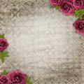 Vintage background with purple rose lace Royalty Free Stock Images