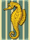 Vintage background with sea horse Royalty Free Stock Photo