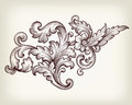 Vintage baroque floral scroll ornament vector foliage filigree engraving retro style design element Royalty Free Stock Photo