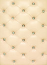 Vintage beige leather background Stock Images