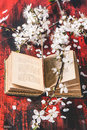 Vintage bible with blossom branch open book of cherry tree on black and red wooden table see series Royalty Free Stock Photography