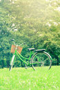 Vintage bicycle surround with tree in a park Royalty Free Stock Photos