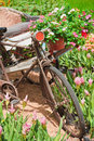 Vintage bicycle tricycle. Royalty Free Stock Image