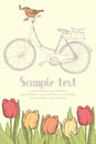 Vintage bicycles and flowers card design Royalty Free Stock Photos