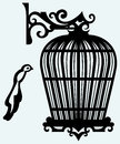 Vintage bird cages isolated on blue background Royalty Free Stock Photos