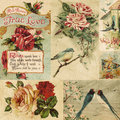 Title: Vintage Bird and flowers collage background