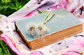 Vintage book and white dandelion flowers Royalty Free Stock Photo