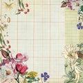 Vintage botanical floral frame with fairy Stock Photos