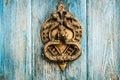 Vintage brass door knocker on wooden door Royalty Free Stock Photo
