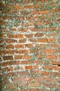 Vintage Brick wall Stock Image