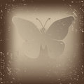 Vintage butterfly illustration vektor Royalty Free Stock Photo