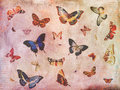 Vintage butterfly background collage Royalty Free Stock Photo