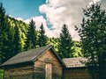 Vintage Cabins in the Woods Royalty Free Stock Photo