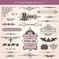 Vintage calligraphic design elements and page decoration vector Stock Photo