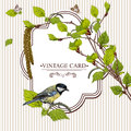 Vintage card with birch twigs and bird tit vector design element nature background Stock Photo