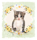 Vintage card with fluffy kitten and roses. Royalty Free Stock Photo