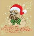 Vintage Christmas Card - Bulld...
