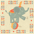 Vintage circus poster Royalty Free Stock Photos