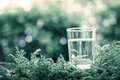 Vintage color tone for a glass of cool fresh water on natural gr Royalty Free Stock Photo