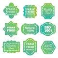 Vintage colorful natural organic bio product vector green tag, labels, emblems and badges