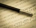 Vintage Conductor's Baton Royalty Free Stock Photo