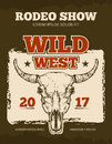 Vintage cowboy rodeo show event vector poster with wild bull skull Royalty Free Stock Photo