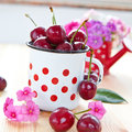 Vintage cup with fresh cherries Royalty Free Stock Photo