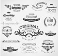 Vintage design elements calligraphy decoration Stock Image