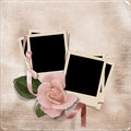 Vintage elegance background with photo frames and rose card the space for text or Royalty Free Stock Photography