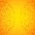 Vintage ethnic vector ornament orange background file eps format Stock Photo