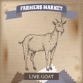 Vintage farmers market label with live goat.