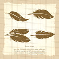 Vintage feather set on notebook page Royalty Free Stock Photo
