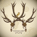 Vintage floral background with a deer skull Royalty Free Stock Photo