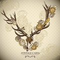 Vintage floral background with a deer skull Royalty Free Stock Images