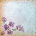 Vintage floral background with grass and flowers on a brown back old paper citizens for any of your project Stock Images