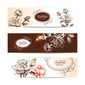 Vintage floral banners with hand drawn roses Stock Photos