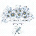 Vintage Floral Card with Birds and Daisies Royalty Free Stock Photo