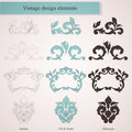 Vintage floral design elements Stock Photos