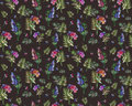 Vintage floral herbs seamless pattern with forest flowers and leaf. Print for textile wallpaper endless. Hand-drawn Royalty Free Stock Photo