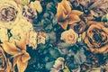 Starodávny kvetina