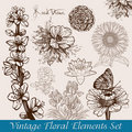 Vintage flowers set Royalty Free Stock Images