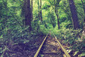 Vintage forest with old railroad and ruined Royalty Free Stock Photography