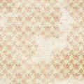 Vintage french floral shabby rose chic wallaper Royalty Free Stock Photo