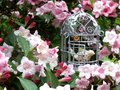 Vintage in the garden shabby chic metal bird cage with bird amongst pink blossom Royalty Free Stock Images
