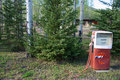 Vintage gas pump red and white setting in evergreen trees Stock Photo