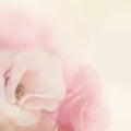 Vintage Gentle Flowers Backgro...